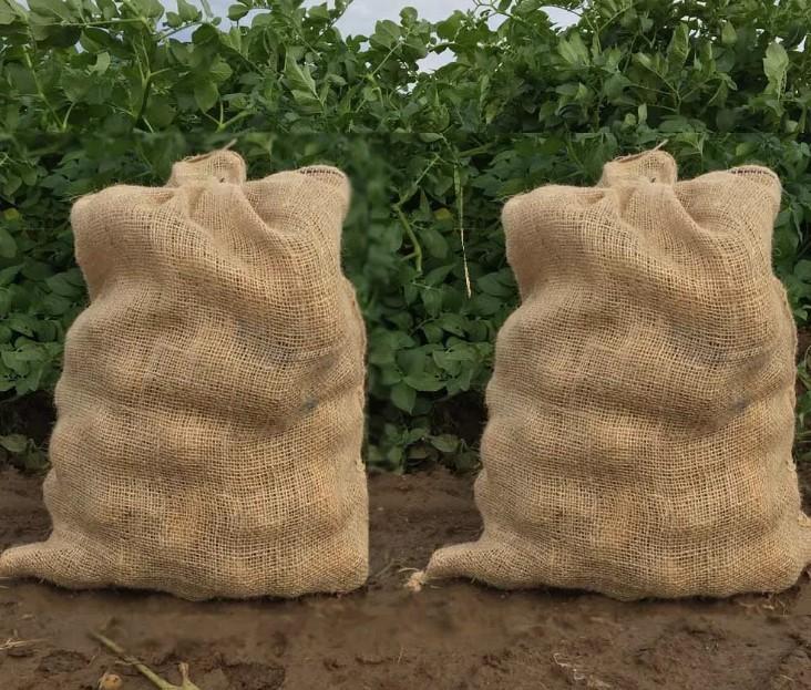 Top gesunde und einfache Möglichkeiten, Kartoffeln zu essen
