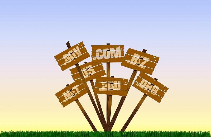 Web-Domains: .gov, .com, .biz, ...